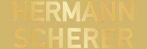Logo - HS
